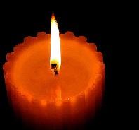 20091225013951-la-llama-de-la-esperanza.jpg