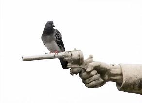 20110331011731-paz-guerra.jpg