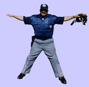20130614005821-arbitro-de-beisbol.jpg