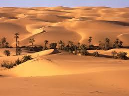 20160627215454-el-desierto.jpg